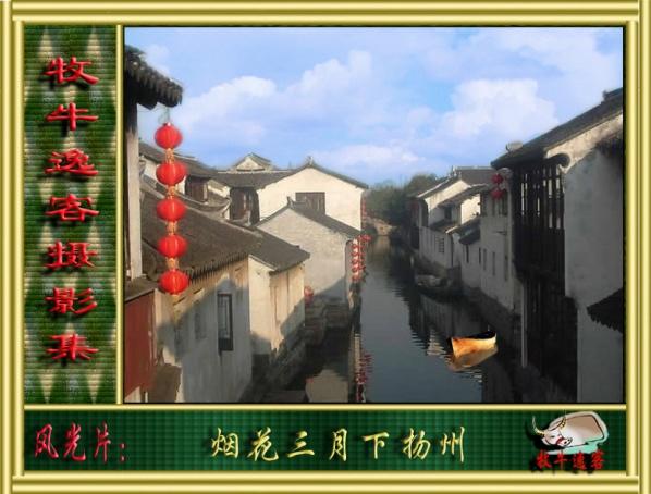 我的摄影:烟花三月下扬州 - 犇犇牛 - --