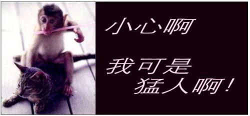 杨石头大话中国十五之西安:惊破天地 泣出鬼神 - 杨石头 - 杨石头网易分舵