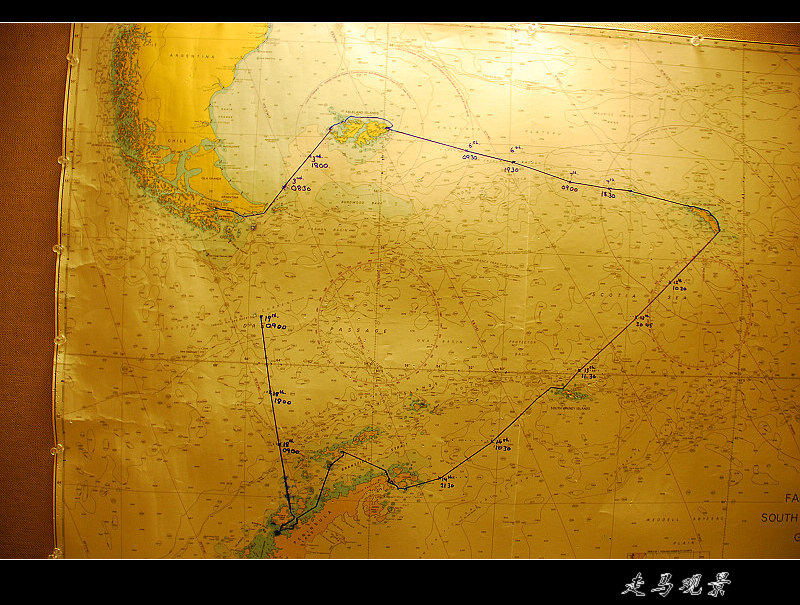啊,南极(四) - 西樱 - 走马观景