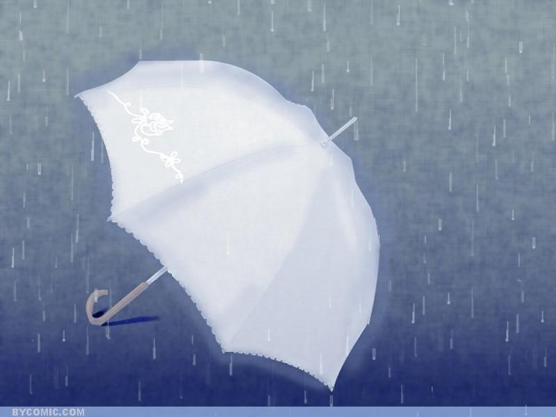 在雨中--- - 枫叶 - 枫叶的博客