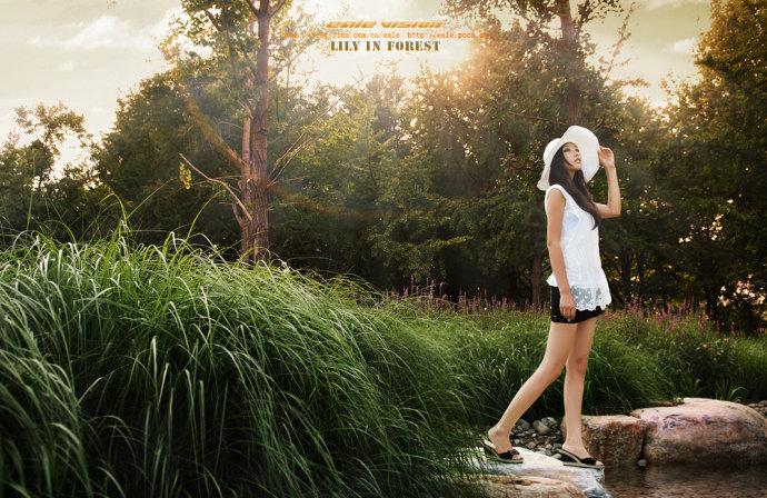 阳光、空气、水--林中百合(米莎YOYO) - ealemailbox - ealemailbox的博客