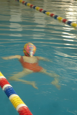 奥运倒计时,泳池展身姿! - 金巧巧 - 金巧巧的博客
