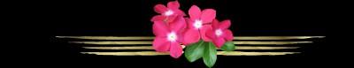 鲜花分隔线 - 阿依莎素材
