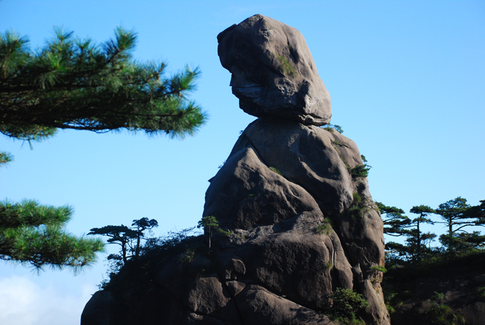 三清山秀甲天下(一) - 66 - 66的小屋