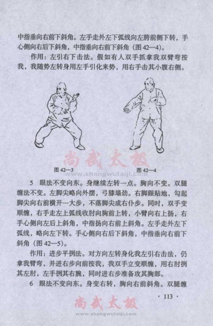 引用 陈式太极拳实用拳法 四十一式小擒打至四十六式后招 - 蓝色小溪 - 蓝色小溪