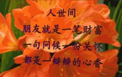 永远的朋友 - lyp5753的日志 - 网易博客 - 龙磐天下 - 龙磐天下博客