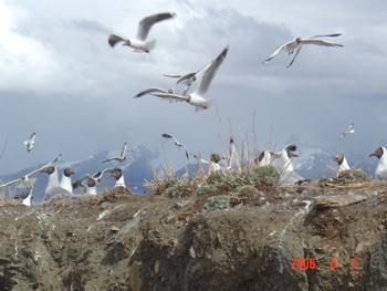 西藏——图片专辑3 - 叶蓓 - 叶蓓的博客