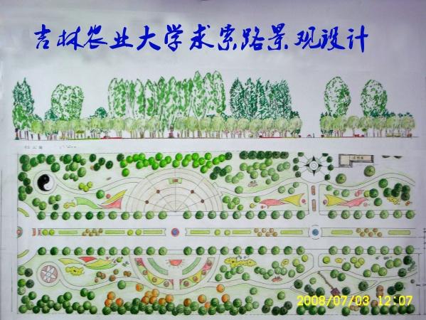 吉林农业大学求索路景观设计说明         - 天堂林艺 - 天堂园林景观艺术