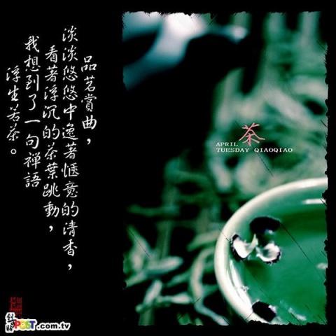品味人生---人生如茶 - 一个人的胡杨林  - 等待明天