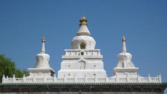 青海之旅B -- 藏传佛教, 喇嘛和我,20081123