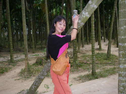 鹊桥仙  天涯情 - 雨忆兰萍 - 网易雨忆兰萍的博客