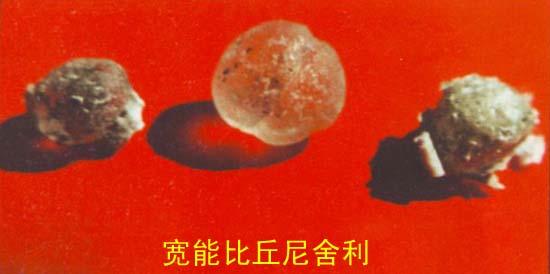 舍利(图片三) - bukongchu - bukongchu的博客