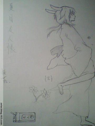 夏目友人帐图(绘)