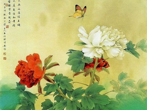 中国功夫 - 香儿 - xianger