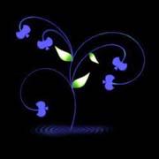 黑色背景插画.蓝绿花 - 香儿 - 香儿