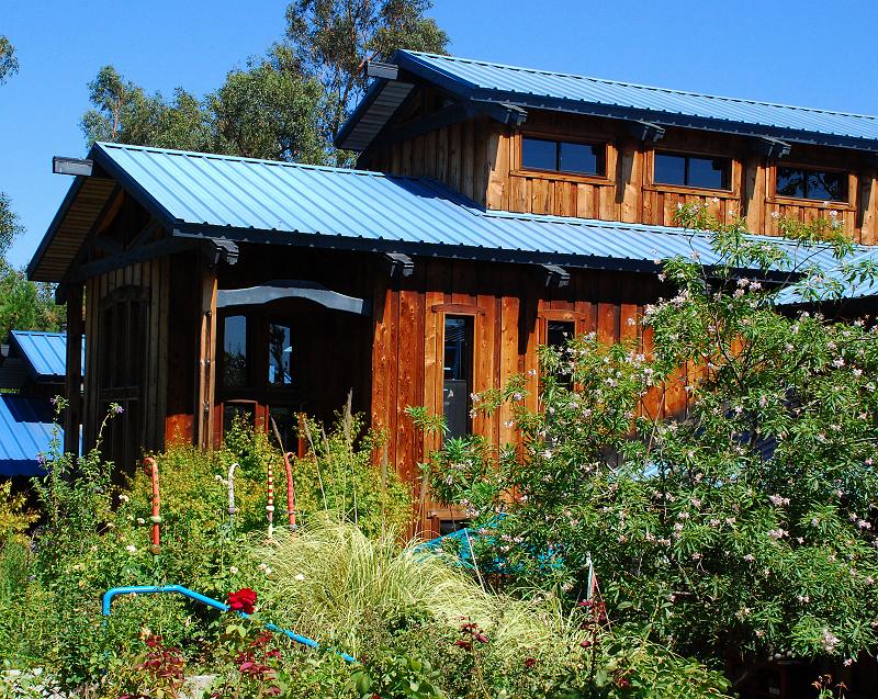 加州阳光(十四)三姆大叔的木屋 - 西樱 - 走马观景
