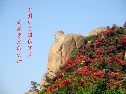 毛公山 - 圣地白鸽 - 圣地白鸽的鸟巢