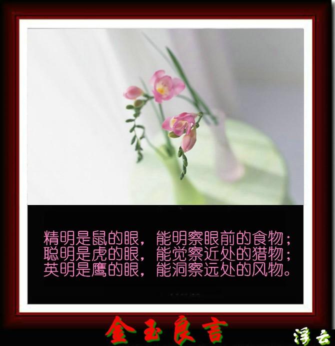 金玉良言 - 香香天使 - 深圳/香香天使网易博客