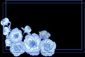 引用 漂亮名片 - 滴墨斋主 - 滴墨斋主的后花园