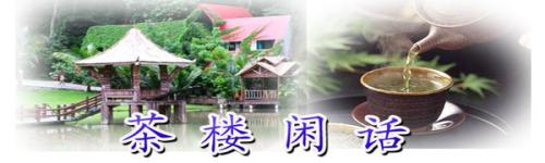 东坡茶楼—电子刊物(第3期08.10.3.)  - 过来人 - 过来人的博客