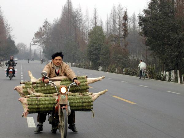 世界上最牛的车技 - 锦泉 - 锦泉