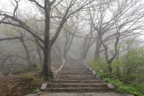 【原创】风 雨 桐 柏 - 大隐吕山 - 大隐于朝 中隐于市 小隐于野