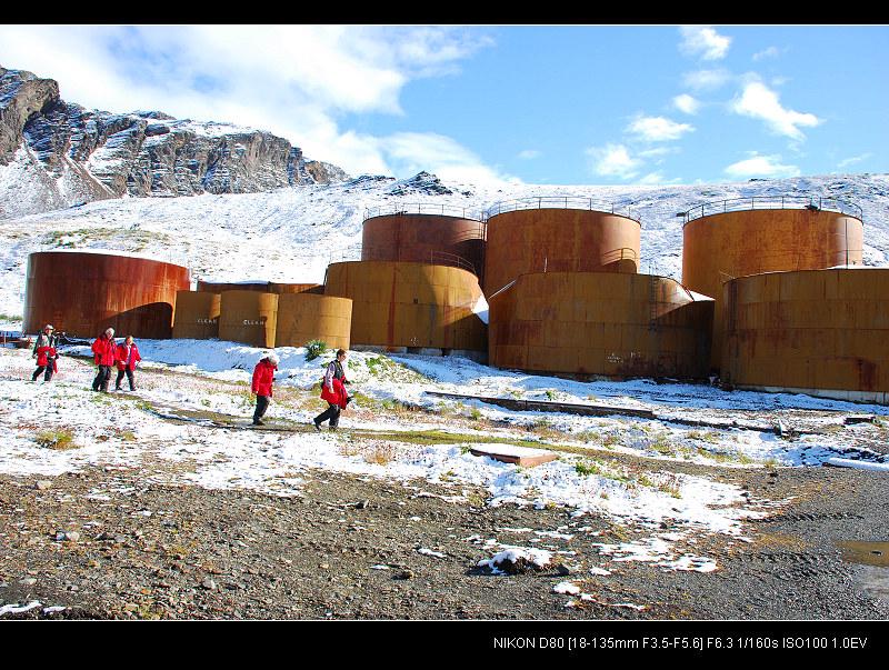 啊,南极(十三) - 西樱 - 走马观景