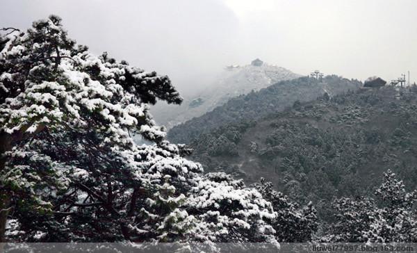 香山雪景(原创) - 刘炜大老虎 - liuwei77997的博客