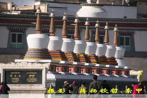 西藏医心术(三) - 蒋扬钦哲,索甲 - 卐愿慈悲与智感化人间!﹎愿世界永照佛光!