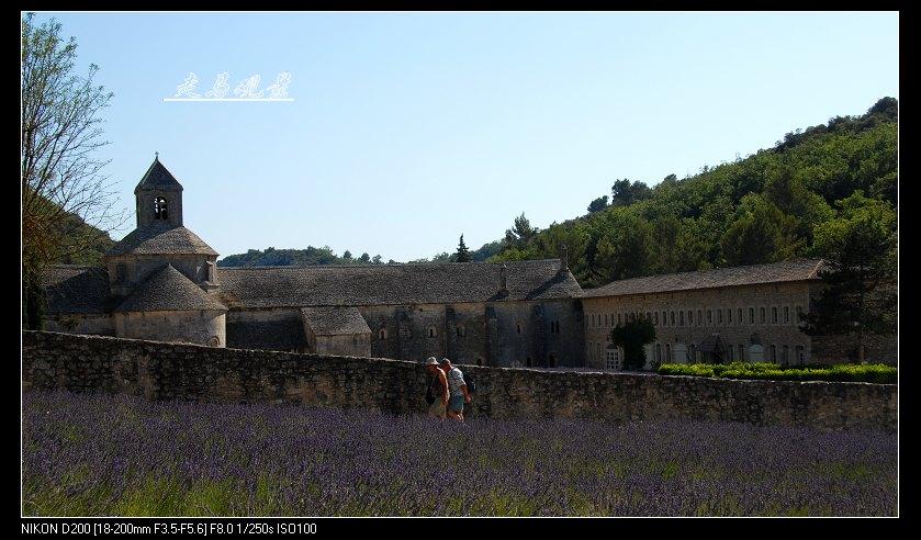 薰衣草 修道院 阿尔勒 - 西樱 - 走马观景