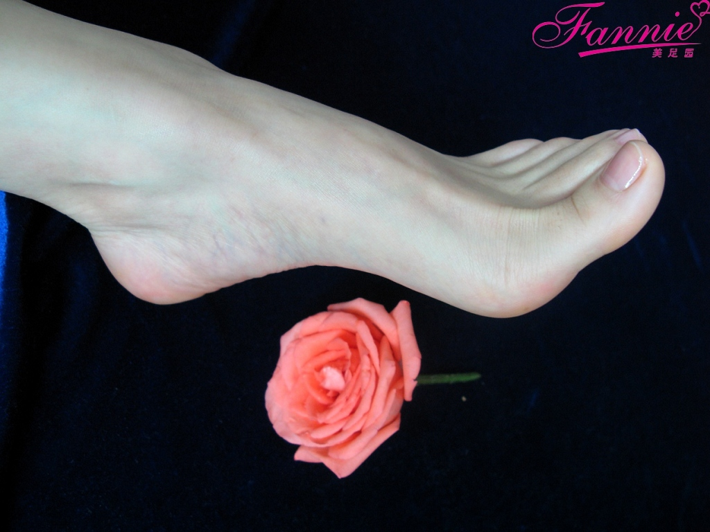 一个人的浪漫。落花寻梦 - 喜欢光脚丫的夏天 - 喜欢光脚丫的夏天