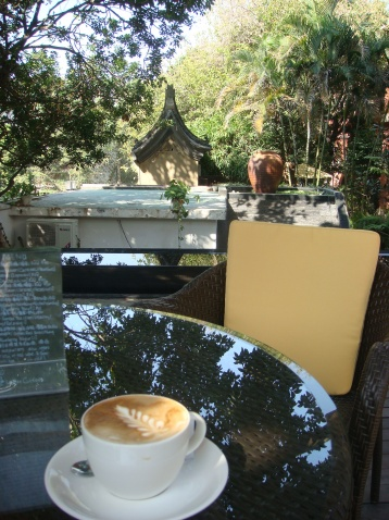 面朝大海,春暖花开 - 阿phy - 阿phy的茶屋