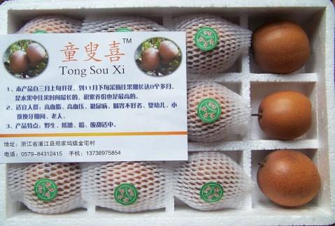浙江省梨地方优良品种的利用现状调查(七):梅梨 - 清扬 - 花果飘香