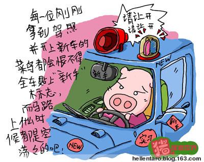 【猪眼看世界-出行】实习司机的伟大愿望 - 恐龟龟 - *恐龟龟的卡通博客*