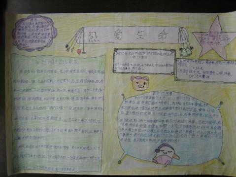 """四年级关于""""热爱生命""""的手抄报"""