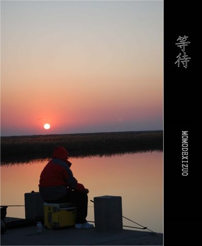 [原创图文]夕阳下的湿地(二) - MOMO - MOMO 的博客