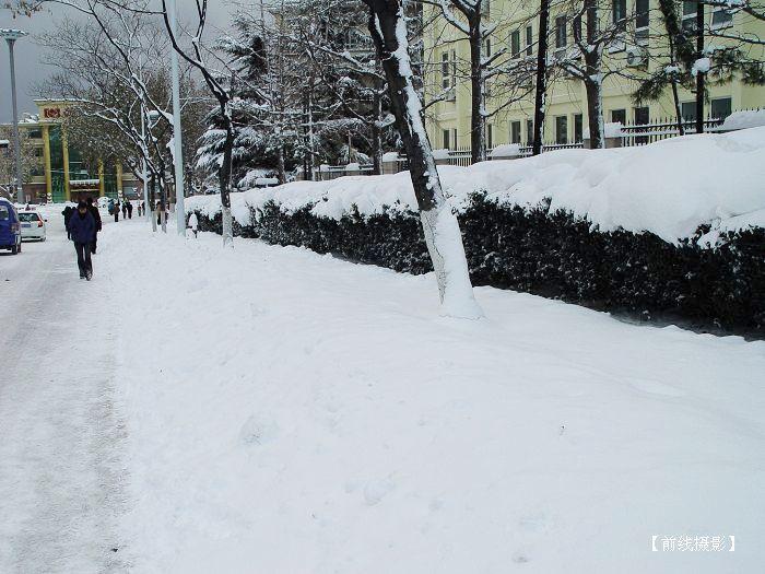■烟台大雪 - 前线 - 前线视界