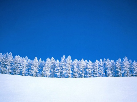 雪的味道 - 暮云 - 游泳的游