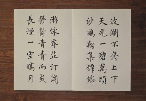 润堂翰墨------杨华书《岳阳楼记》册页 - 杨涵之 - 杨涵之的无闲草堂