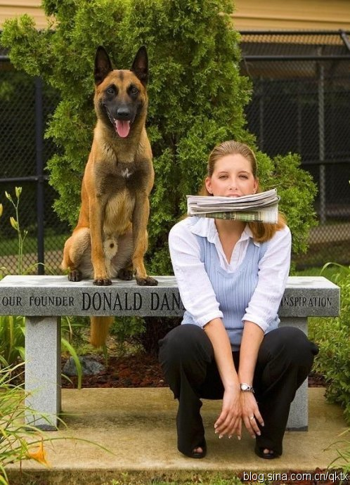 别笑!这些狗狗很懂生活情趣