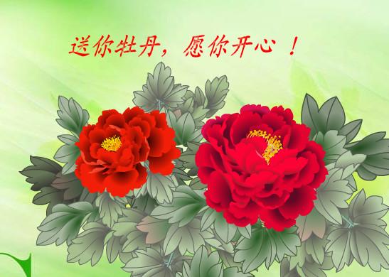 四十女人一枝花(转) - 清影独秀 - 1