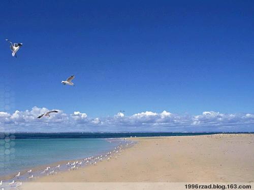 【音乐】不老的记忆-罗马尼亚电影《沸腾的生活》主题曲 - 海洋冰心 - 栀子花的容颜-海洋冰心