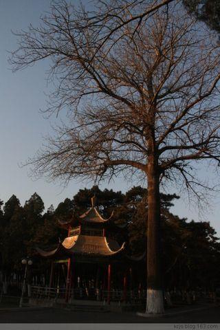 冬日恋歌 - Lilac - Lilac