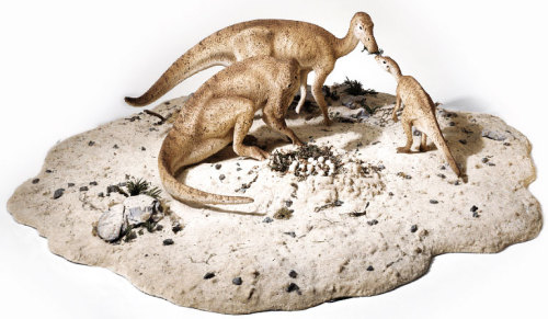 恐龙是怎样炼成的?-胚胎篇 - 邢立达 - 邢立达的恐龙频道