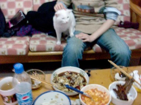 饺子还是要吃 - ★老毛★ - WELCOME