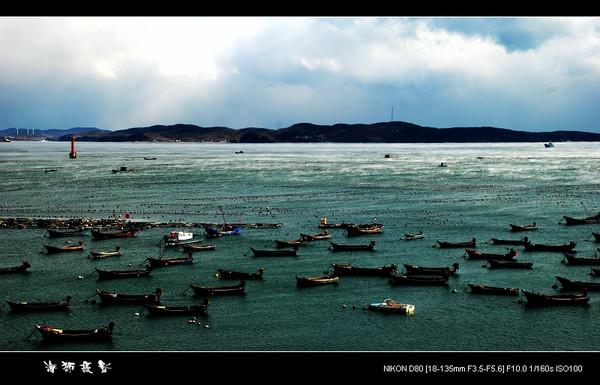 [原创]  冬海 - 海狮 - 大连海狮的博客