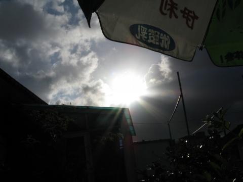 台风凤凰来前傍晚的云(原创) - 雁儿 - 雁儿之家