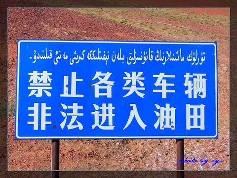 [原创]梦幻西域(06/35)史前地质博物馆准噶尔盆地 - 自由诗 - 人文历史自然 诗词曲赋杂谈