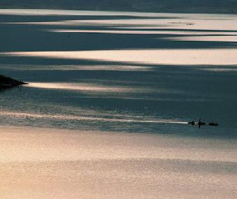 静湖 - 老秋 - 老鱼吹浪的博客