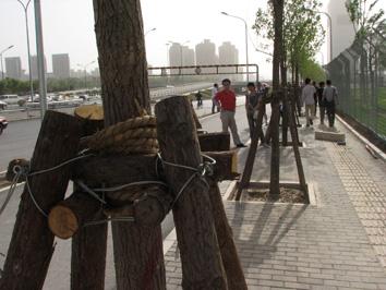 北京之行(1)——出发到达 - 透明雨 - 透明雨的博客